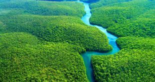 туры в Амазонию